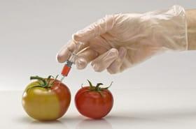 Les grands chefs de la gastronomie déclarent la guerre à Monsanto/Bayer
