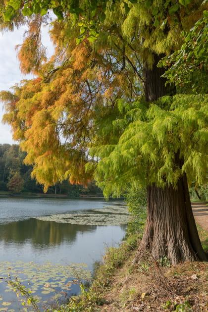 Les étangs de Corot, une escapade romantique