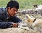 Le dernier loup