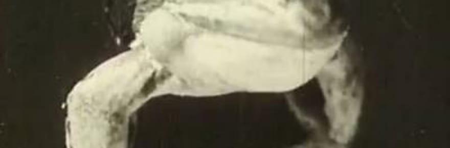 Alessandro Volta: des expériences sur lesgrenouille àlapremière pile électrique [VIDEO]