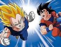 Dragon Ball Z : Une lourde responsabilité
