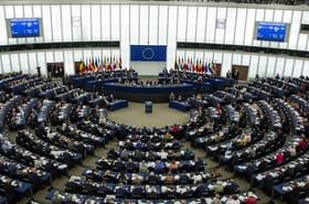 Elections européennes: date, candidats, résultat des sondages... Tout savoir