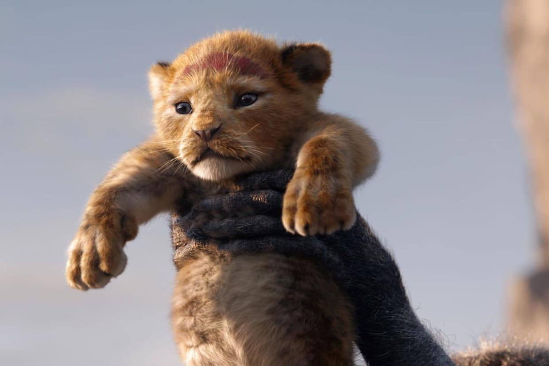 Le Roi Lion Le Remake 2019 Royal Au Box Office Qu En