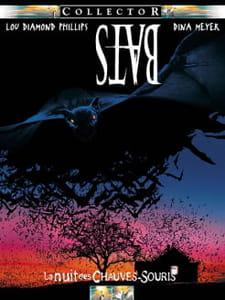 BATS, la nuit des chauves-souris