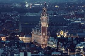 Escapade hivernale à Lille