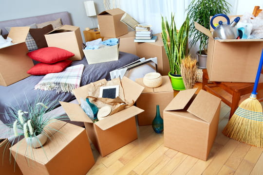 Déménagement: prix, pas cher, confinement... L'essentiel