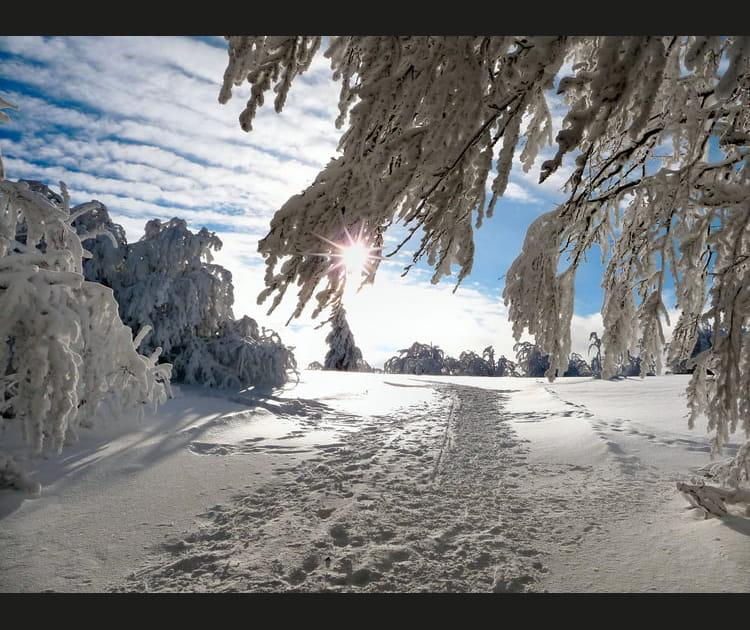 Les Vosges se métamorphosent en hiver