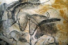 Grotte Chauvet : visite du nouveau site classé à l'Unesco