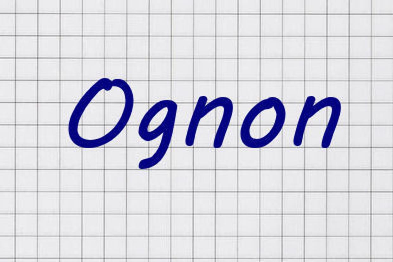 Réforme de l\'orthographe : le nouveau look des mots en images