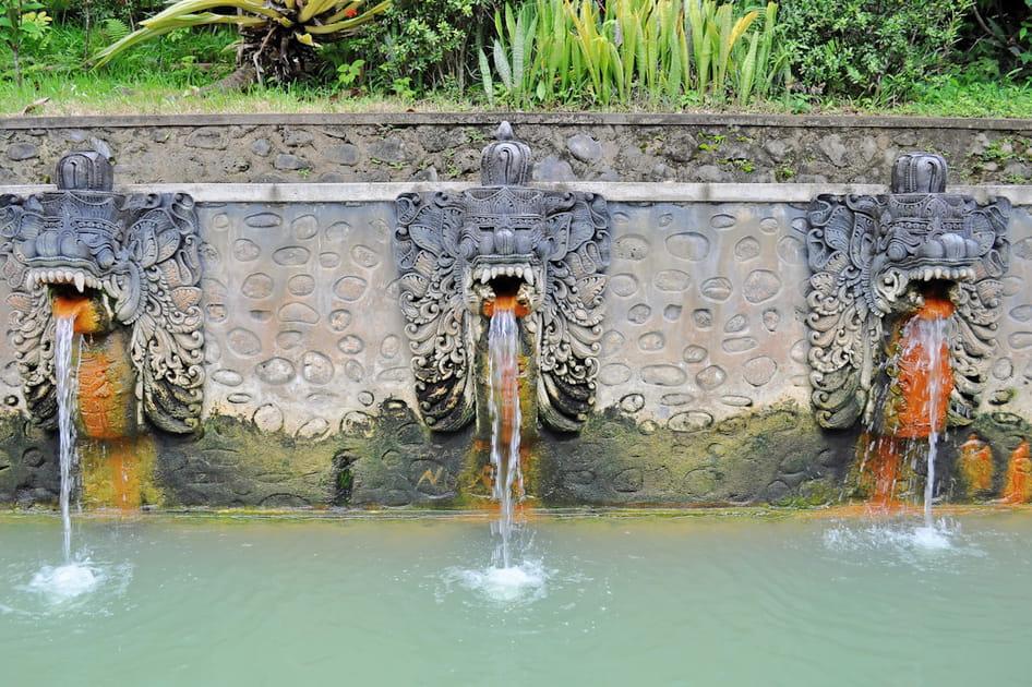 Les sources de Banjar à Bali