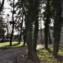 Le Parc d'Eden  - Le Parc -   © Le Parc d'Eden