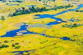 Botswana : les merveilles de l'Okavango
