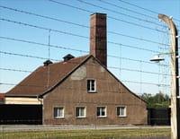Les grandes batailles de la 2e Guerre mondiale : La libération du camp de Buchenwald
