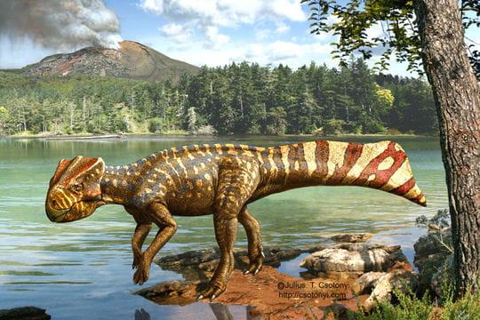 Dinosaure à corne