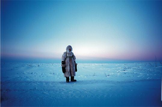 Arktica