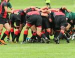 Rugby à XV : Champions Cup - Bordeaux-Bègles / Racing 92