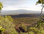 Afrique, les trésors cachés de la nature
