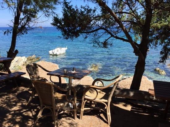 Restaurant : La Cabane du Lodo  - Terrasse -