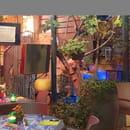 Restaurant : La Riviera  - ''le jardin'' -   © la riviera