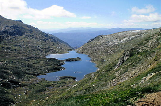 Parc national de kosciuszko for 228 salon wimbledon
