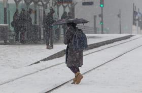 Neige : la situation s'améliore, les prévisions