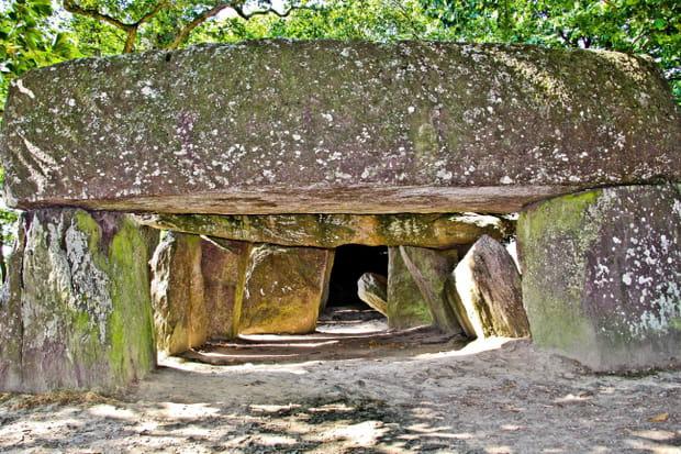 Le dolmen de la Roche-aux-Fées