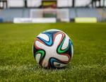 Football : Ligue des champions - Benfica Lisbonne / Bayern Munich