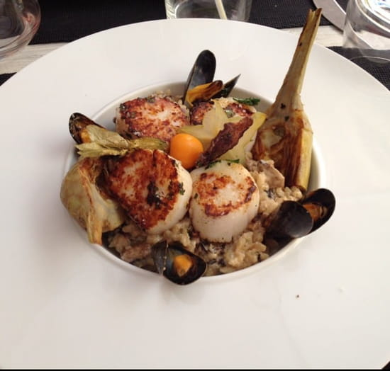 Plat : Le Vauban  - SAINT Jacques & risotto -