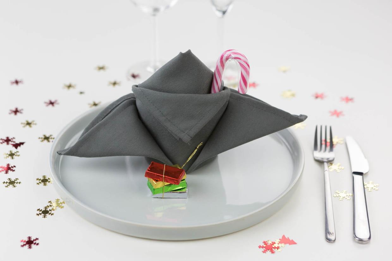 pliage de serviette en fleur de lys. Black Bedroom Furniture Sets. Home Design Ideas