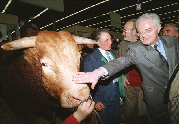 Caresser les vaches, encore et encore...
