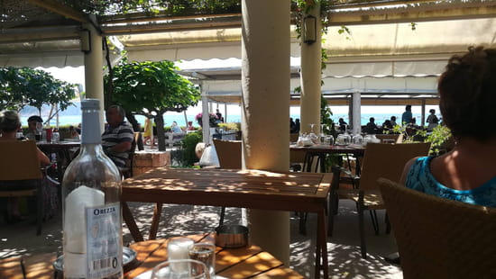Restaurant : Le Café de la Plage  - Tres bruyant -