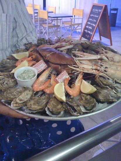 Le Dauphin, Restaurant de poissons - fruits de mer à Royan ...