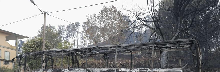 Incendies au Portugal: photos et vidéos après le passage des flammes