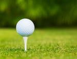Golf : Open d'Orlando - Open d'Orlando