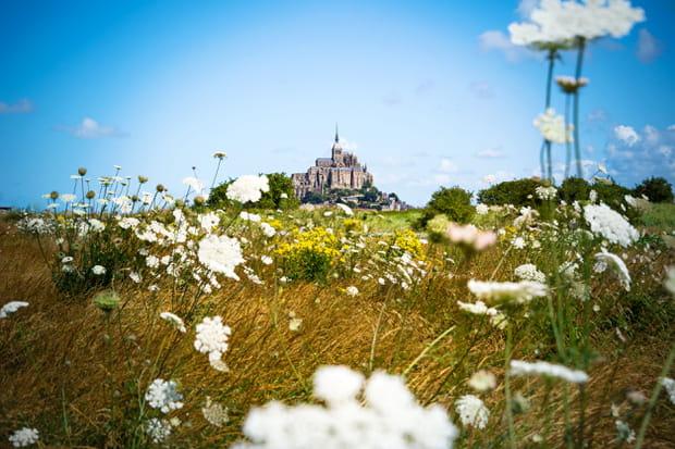 La Normandie au printemps