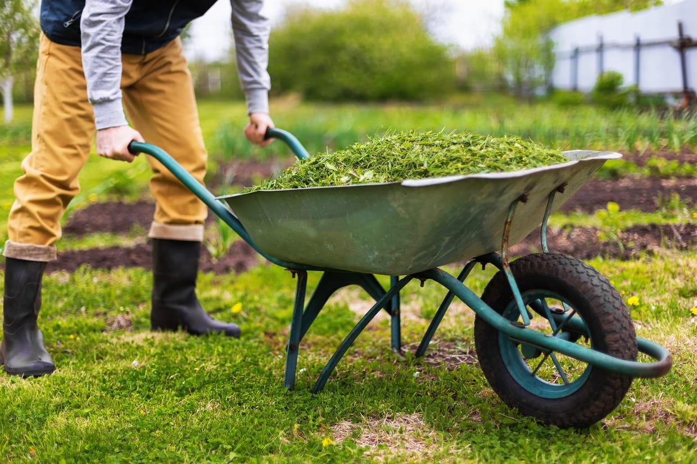 Brouette : comment bien choisir sa brouette de jardin, notre sélection