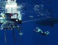 Défis fous : Robot sous-marin