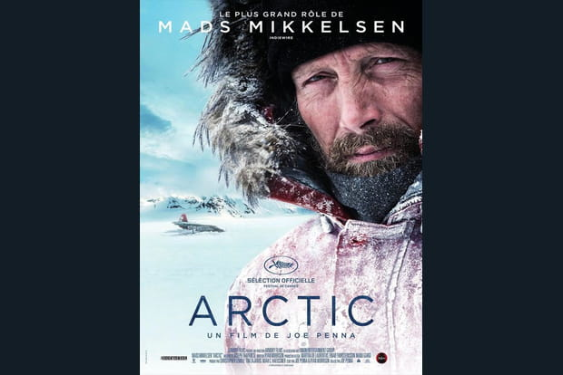 Arctic - Photo 1
