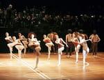 Ballet de Maurice Béjart : 9e de Beethoven