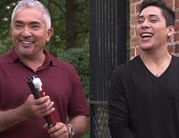 Cesar et son fils : L'appel du devoir
