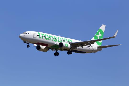 Transavia lancera neuf nouvelles liaisons en 2019