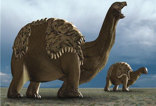 Tortunosaure