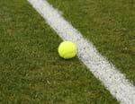 Tennis : Tournoi ATP de Halle