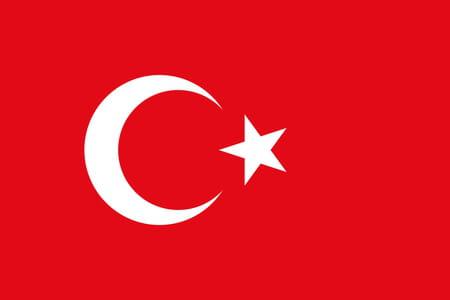 Score Turquie