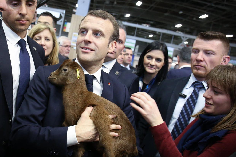 """Résultat de recherche d'images pour """"Macron salon de l'agriculture nourriture"""""""