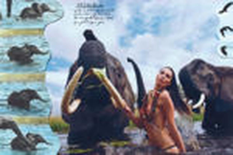 Le calendrier Pirelli 2009 : sauvage et sensuel