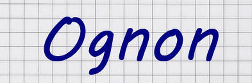 Réforme de l'orthographe: le nouveau look des mots en images