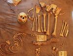 Les mystères des momies de l'Himalaya