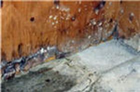 Les démarches pour un dégât des eaux