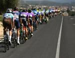 Cyclisme : Tour d'Andalousie - Beas de Segura - Villarrodrigo (175,1 km)